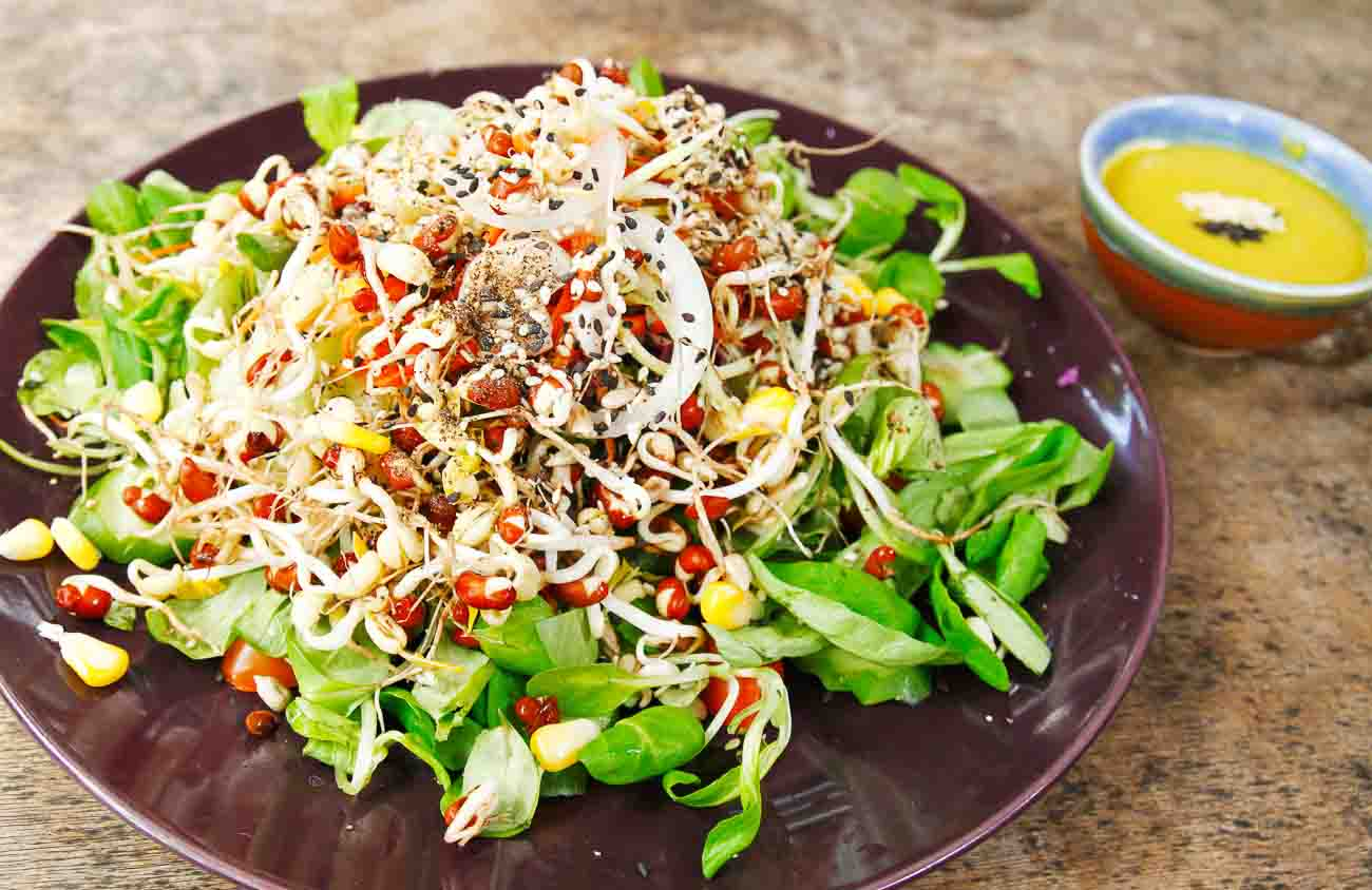 Image result for sprouts salad