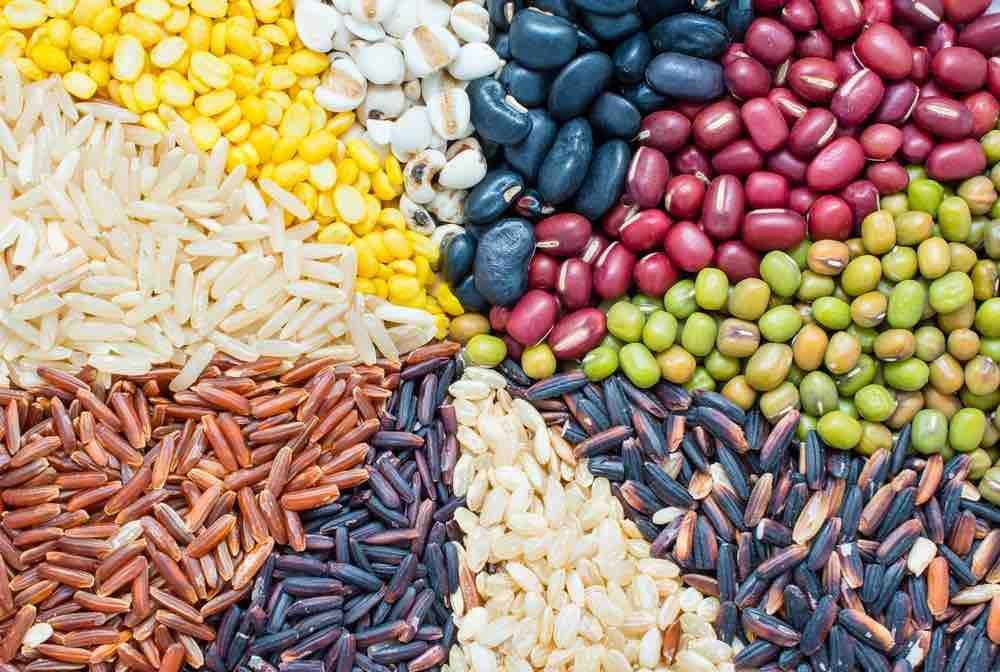 7 high protein indian vegetarian foods by archanas kitchen
