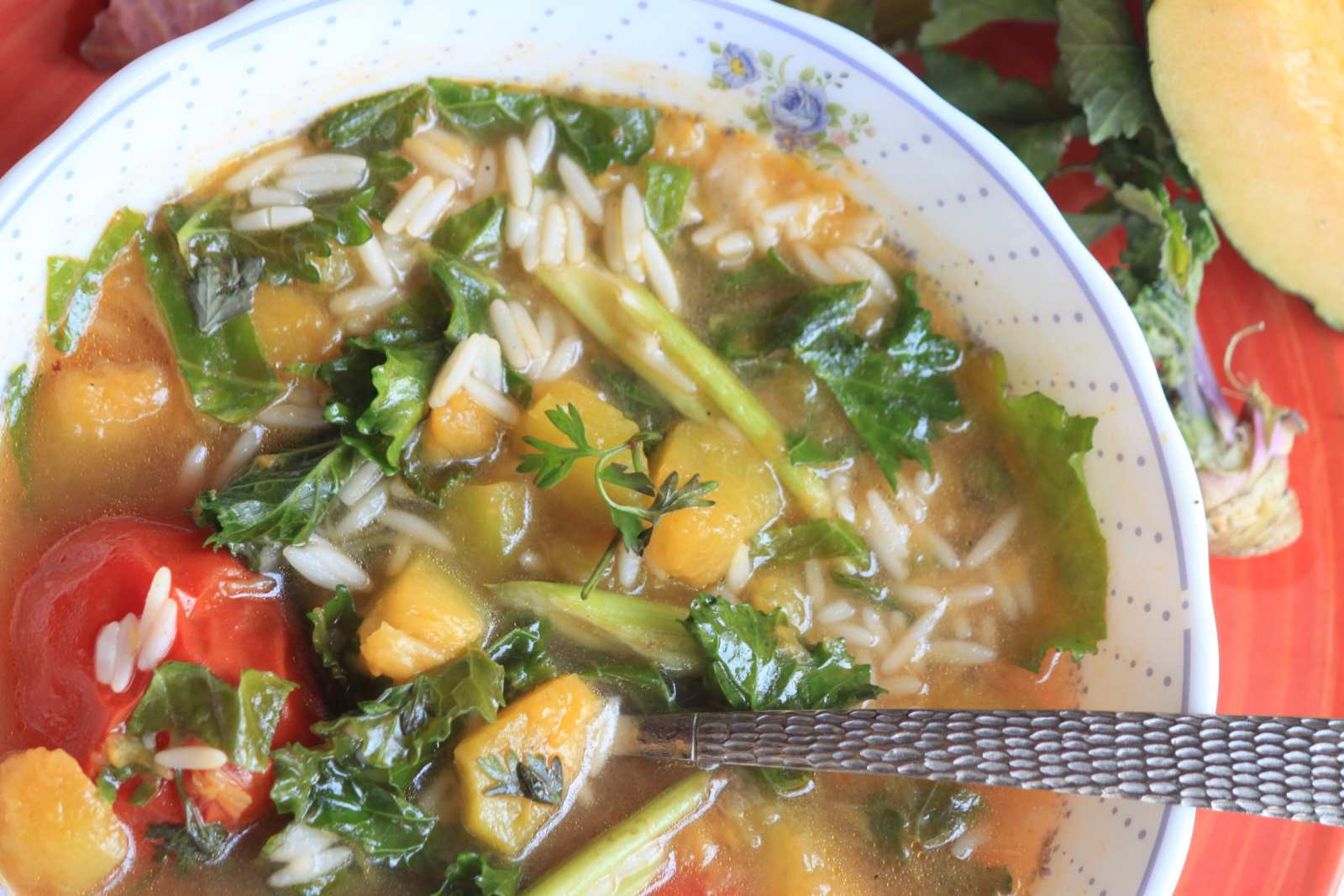 Kale Pumpkin Orzo Soup Recipe